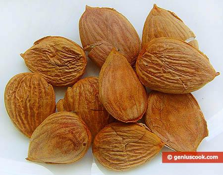 Семена абрикосов против рака