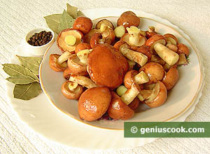 Ingredienti Funghi pinaroli marinati