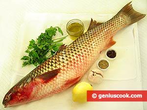 Рыба кефаль рецепты