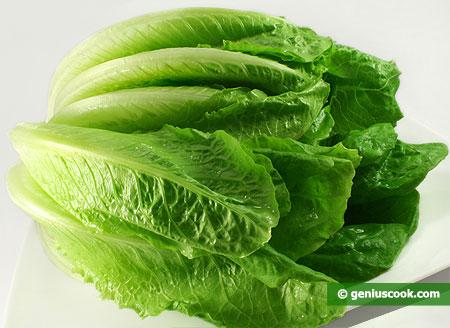 Зелёный листовой салат