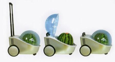 Холодильник для арбузов