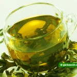 Зелёный чай снижает холестерин