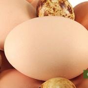 Яичный белок снижает давление