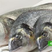 Рыба сокращает риск ревматоидного артрита
