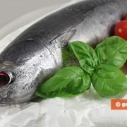 Ингредиенты для тунца в томатном соусе