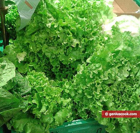 Нежные листовые салаты