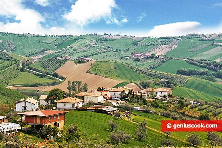 Итальянский сельский пейзаж